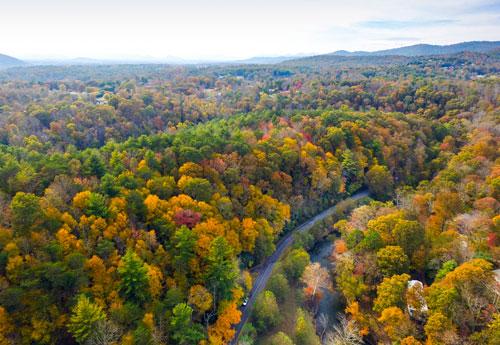 Riverbend Forest